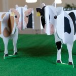 Making pattern recognition and A.I. relevant in the real world, with cows